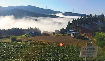 茶畑からの眺め(時期によっては、雲海が見れます)
